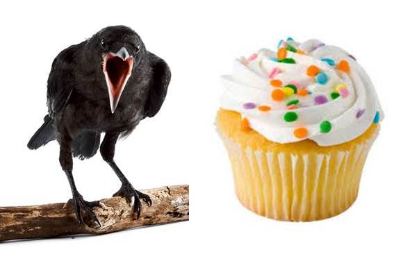 crow cupcake